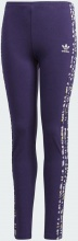 Adidas Leggings (GD2805)